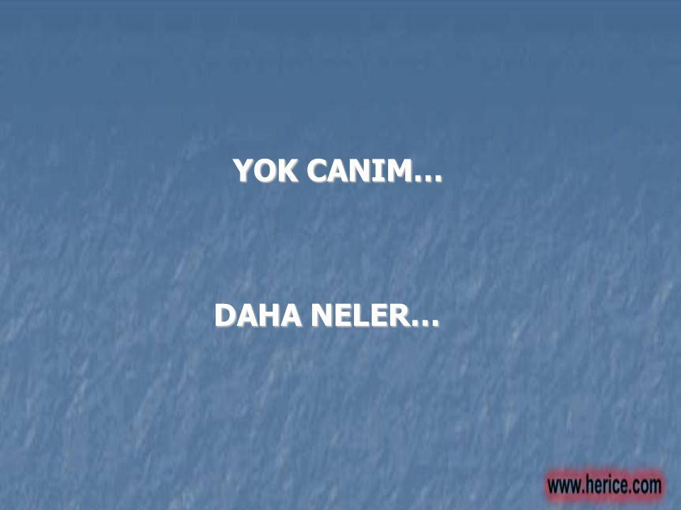 YOK CANIM… DAHA NELER…