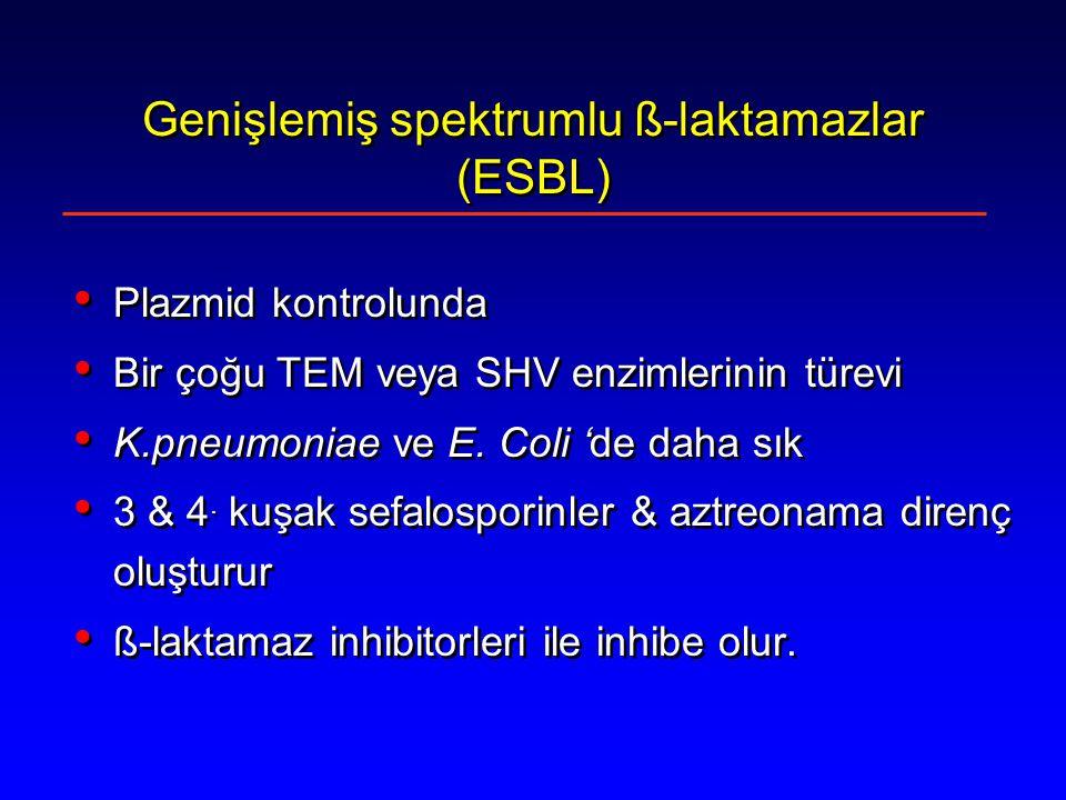 Genişlemiş spektrumlu ß-laktamazlar (ESBL)