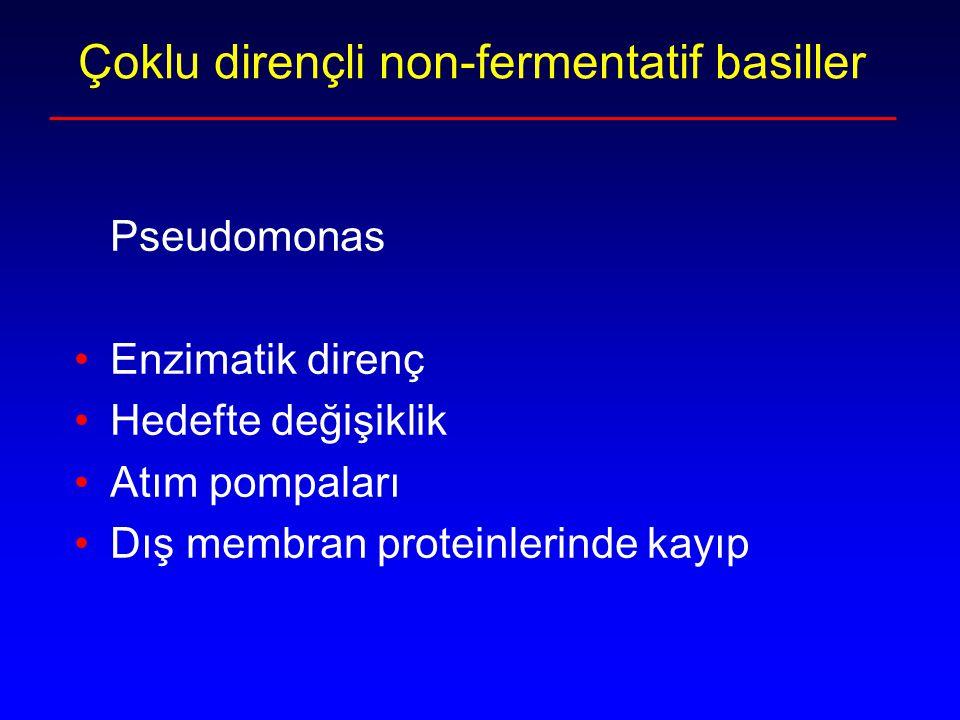 Çoklu dirençli non-fermentatif basiller