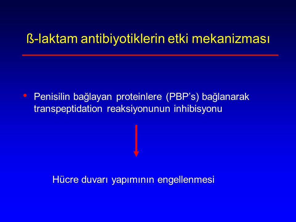 ß-laktam antibiyotiklerin etki mekanizması
