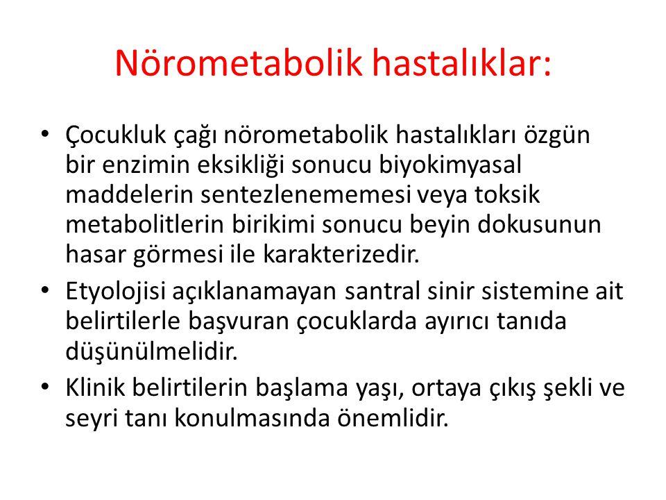 Nörometabolik hastalıklar: