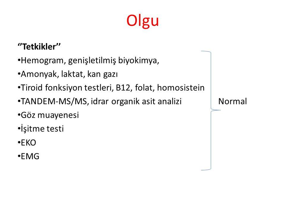 Olgu ''Tetkikler'' Hemogram, genişletilmiş biyokimya,