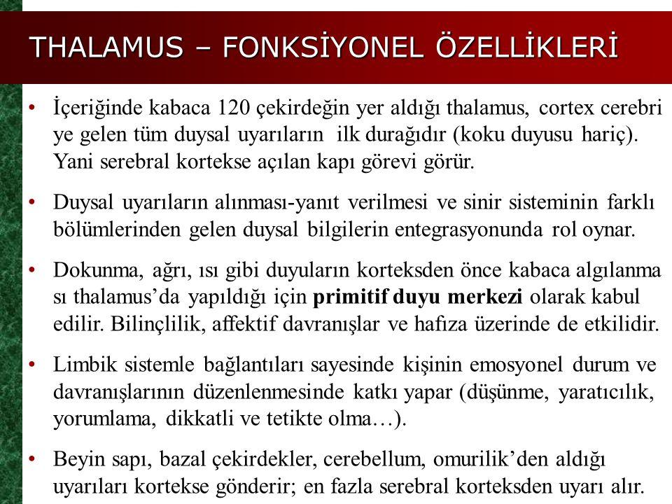 THALAMUS – FONKSİYONEL ÖZELLİKLERİ