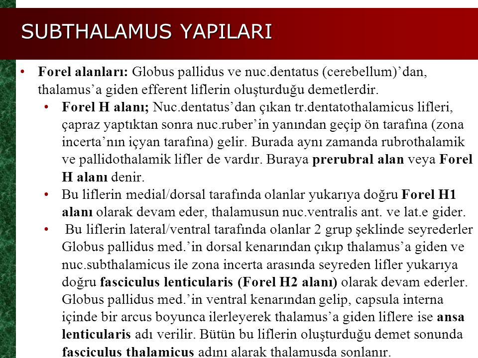 SUBTHALAMUS YAPILARI Forel alanları: Globus pallidus ve nuc.dentatus (cerebellum)'dan, thalamus'a giden efferent liflerin oluşturduğu demetlerdir.