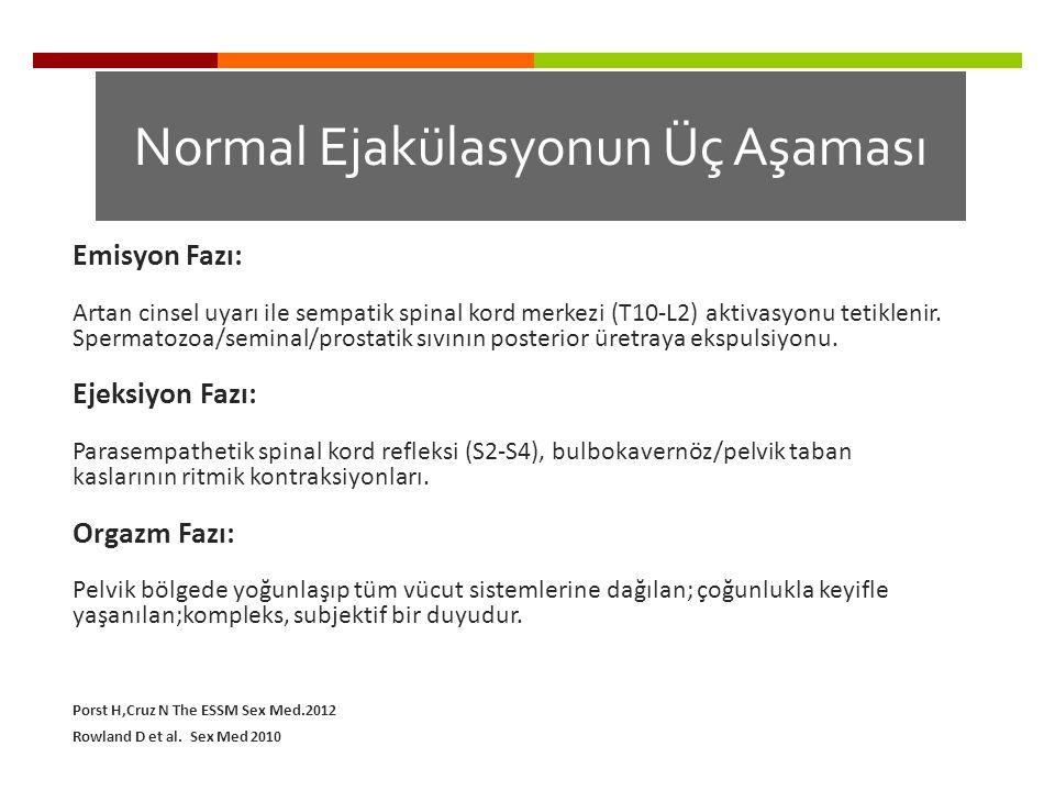 Normal Ejakülasyonun Üç Aşaması