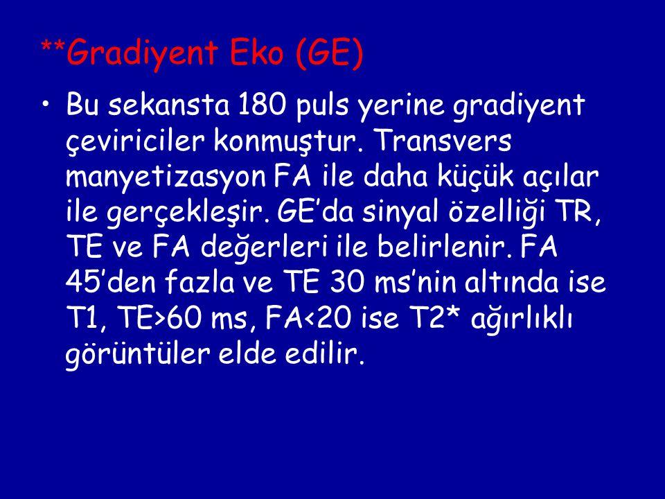 **Gradiyent Eko (GE)