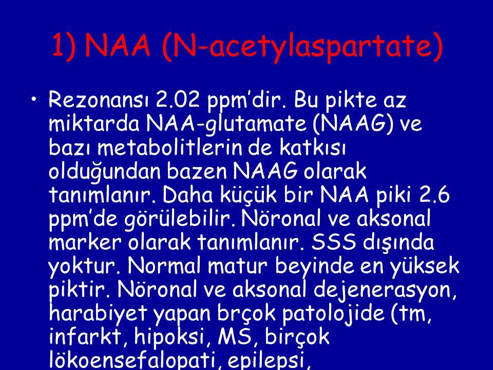 1) NAA (N-acetylaspartate)