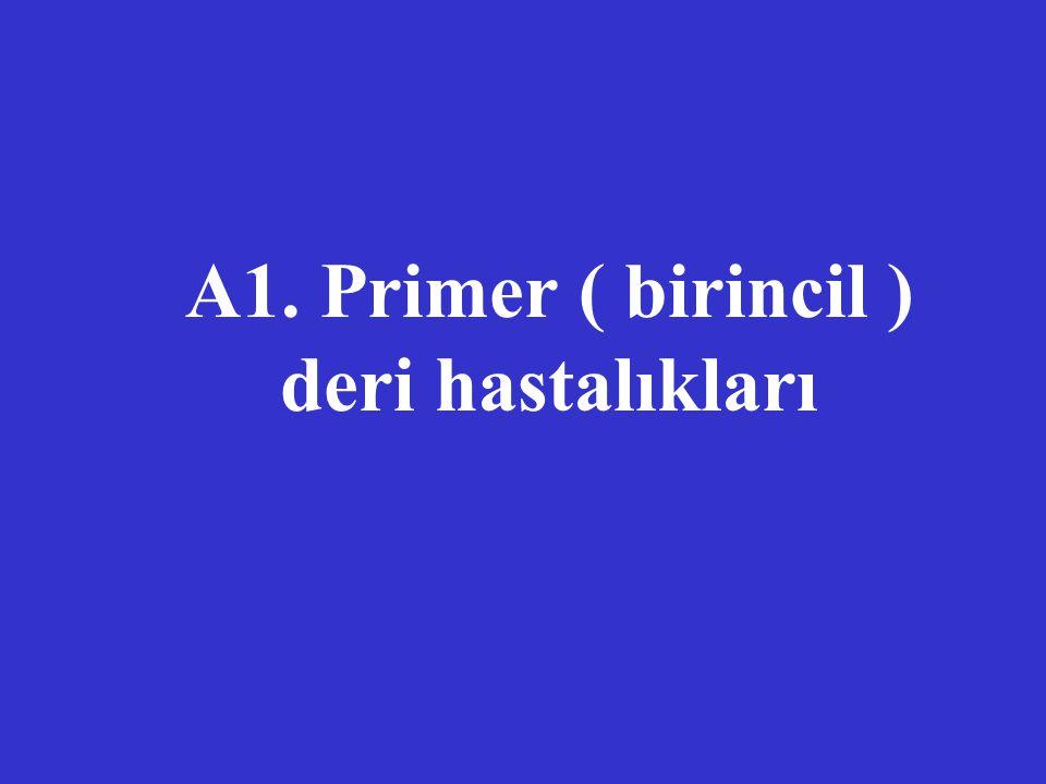 A1. Primer ( birincil ) deri hastalıkları