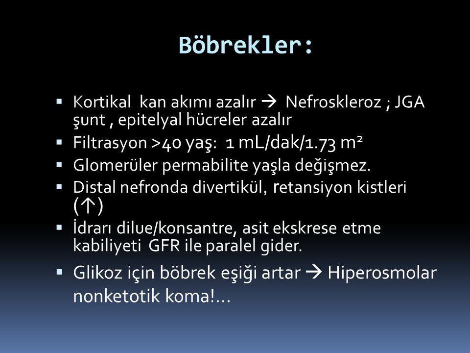 Böbrekler: Kortikal kan akımı azalır  Nefroskleroz ; JGA şunt , epitelyal hücreler azalır. Filtrasyon >40 yaş: 1 mL/dak/1.73 m2.