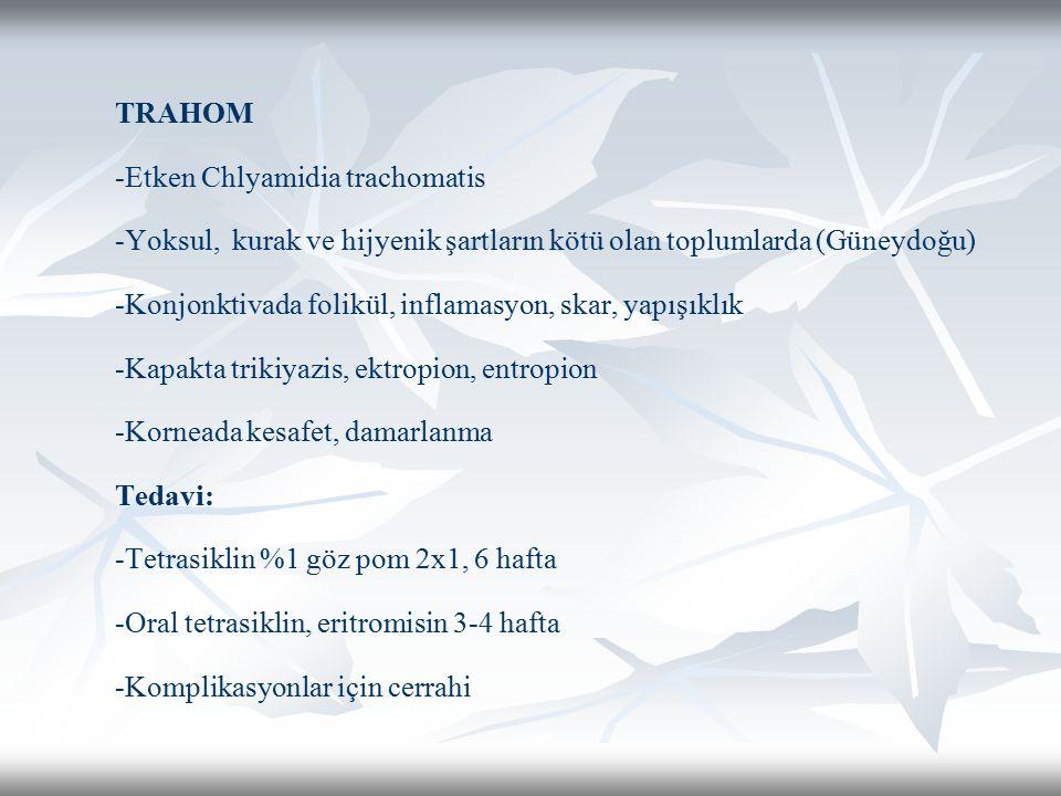 TRAHOM -Etken Chlyamidia trachomatis -Yoksul, kurak ve hijyenik şartların kötü olan toplumlarda (Güneydoğu) -Konjonktivada folikül, inflamasyon, skar, yapışıklık -Kapakta trikiyazis, ektropion, entropion -Korneada kesafet, damarlanma Tedavi: -Tetrasiklin %1 göz pom 2x1, 6 hafta -Oral tetrasiklin, eritromisin 3-4 hafta -Komplikasyonlar için cerrahi
