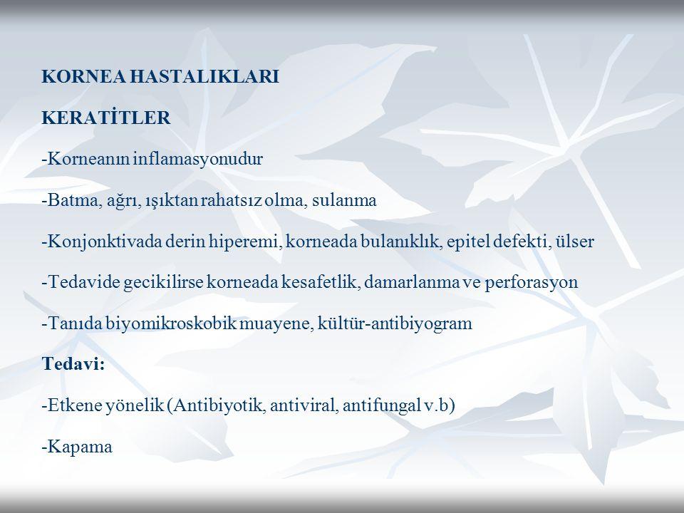 KORNEA HASTALIKLARI KERATİTLER -Korneanın inflamasyonudur -Batma, ağrı, ışıktan rahatsız olma, sulanma -Konjonktivada derin hiperemi, korneada bulanıklık, epitel defekti, ülser -Tedavide gecikilirse korneada kesafetlik, damarlanma ve perforasyon -Tanıda biyomikroskobik muayene, kültür-antibiyogram Tedavi: -Etkene yönelik (Antibiyotik, antiviral, antifungal v.b) -Kapama