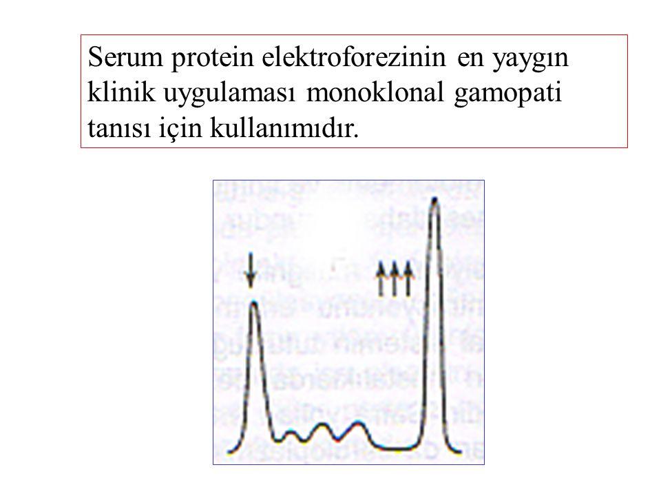 Serum protein elektroforezinin en yaygın klinik uygulaması monoklonal gamopati tanısı için kullanımıdır.