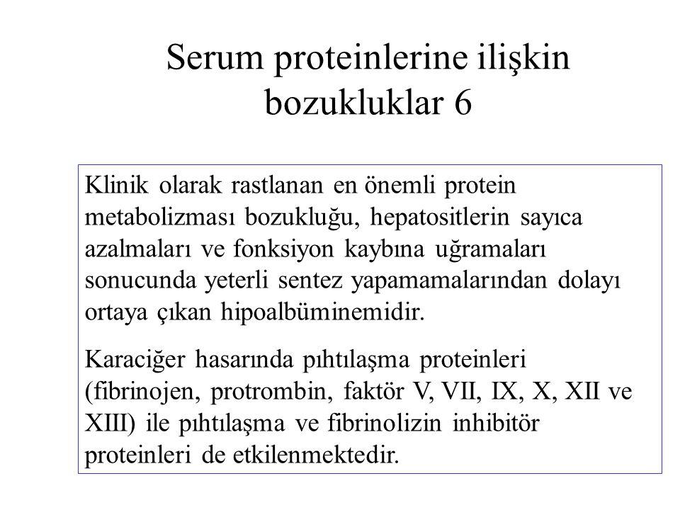 Serum proteinlerine ilişkin bozukluklar 6