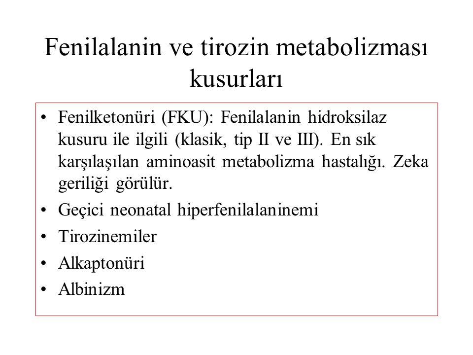 Fenilalanin ve tirozin metabolizması kusurları