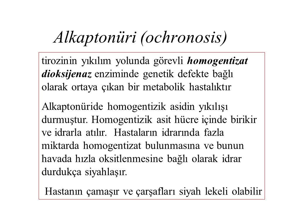 Alkaptonüri (ochronosis)