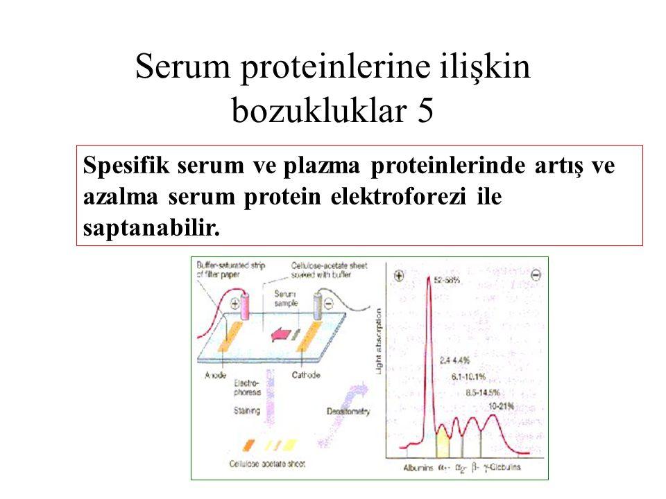 Serum proteinlerine ilişkin bozukluklar 5