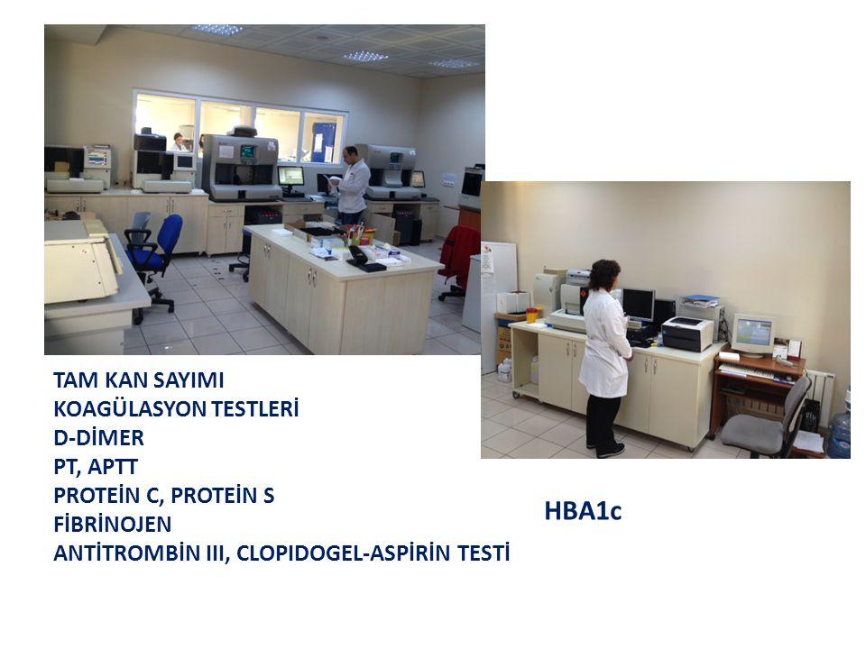 HBA1c TAM KAN SAYIMI KOAGÜLASYON TESTLERİ D-DİMER PT, APTT