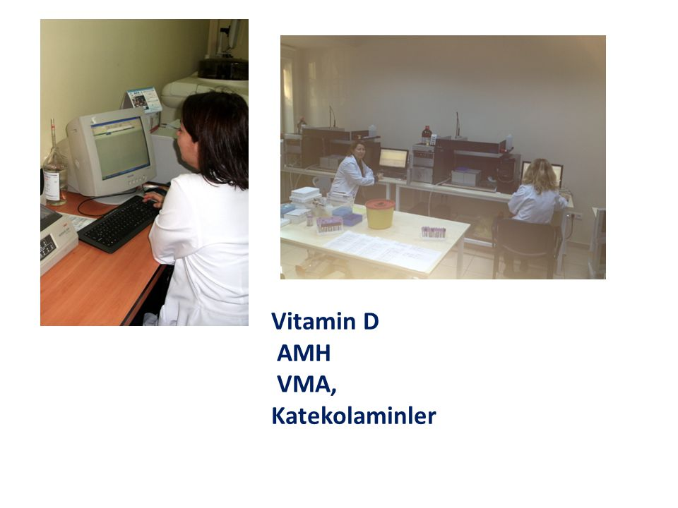 Vitamin D AMH VMA, Katekolaminler