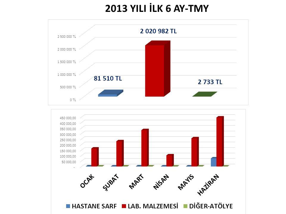 2013 YILI İLK 6 AY-TMY