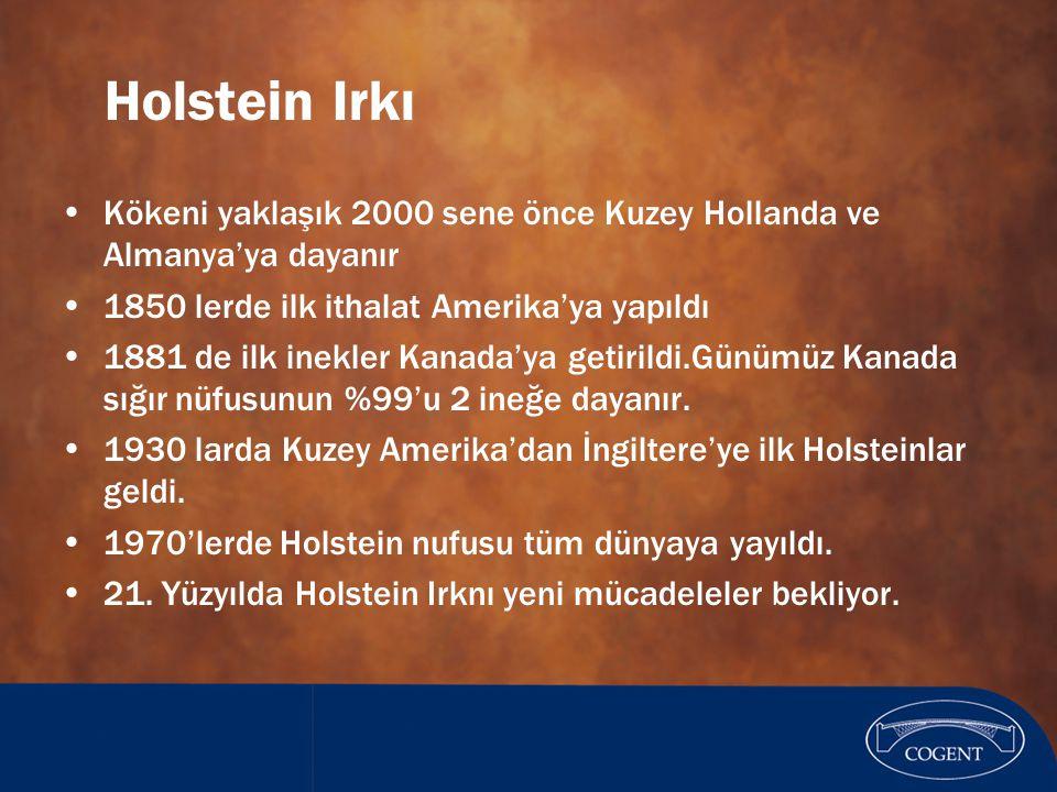 Holstein Irkı Kökeni yaklaşık 2000 sene önce Kuzey Hollanda ve Almanya'ya dayanır. 1850 lerde ilk ithalat Amerika'ya yapıldı.
