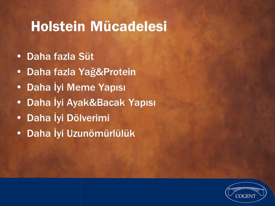 Holstein Mücadelesi Daha fazla Süt Daha fazla Yağ&Protein