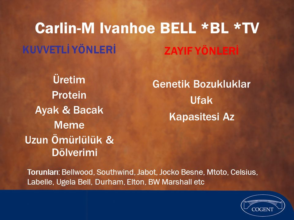 Carlin-M Ivanhoe BELL *BL *TV