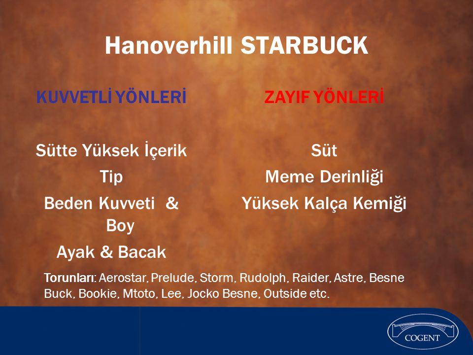 Hanoverhill STARBUCK KUVVETLİ YÖNLERİ Sütte Yüksek İçerik Tip