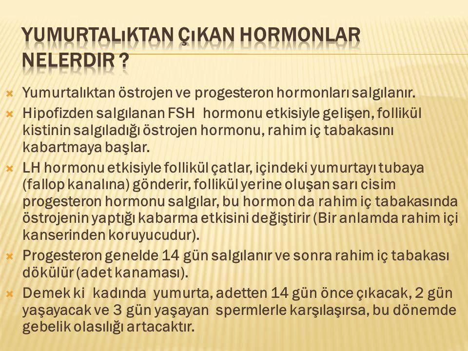 Yumurtalıktan çıkan hormonlar nelerdir