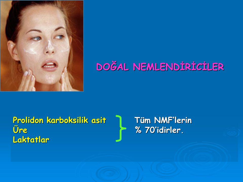 Prolidon karboksilik asit Tüm NMF'lerin Üre % 70'idirler. Laktatlar
