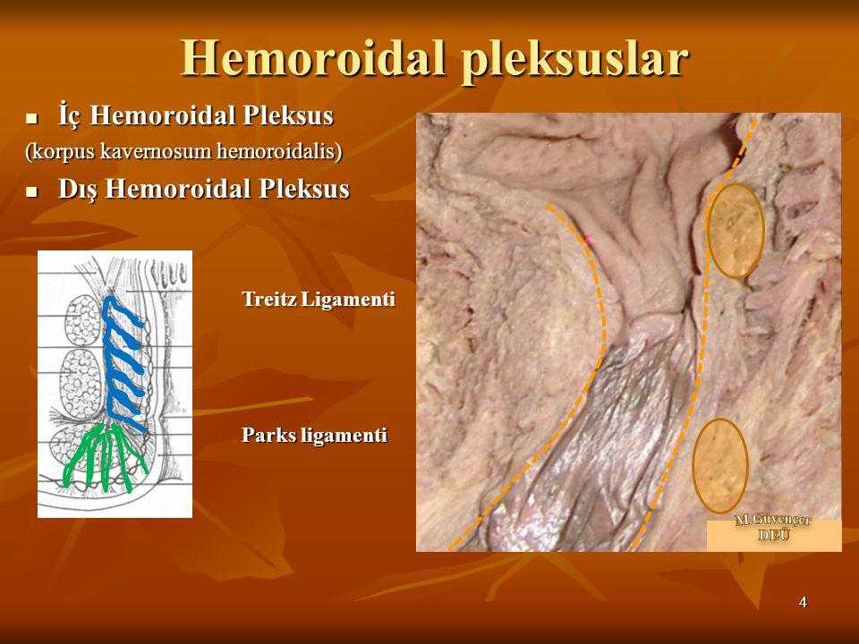 Hemoroidal pleksuslar
