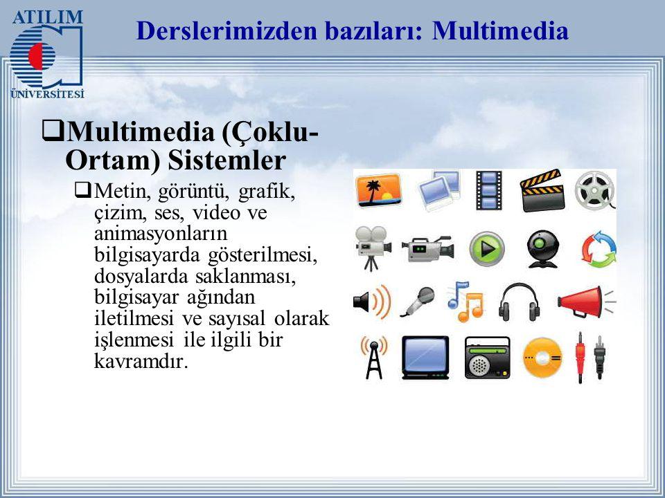 Derslerimizden bazıları: Multimedia