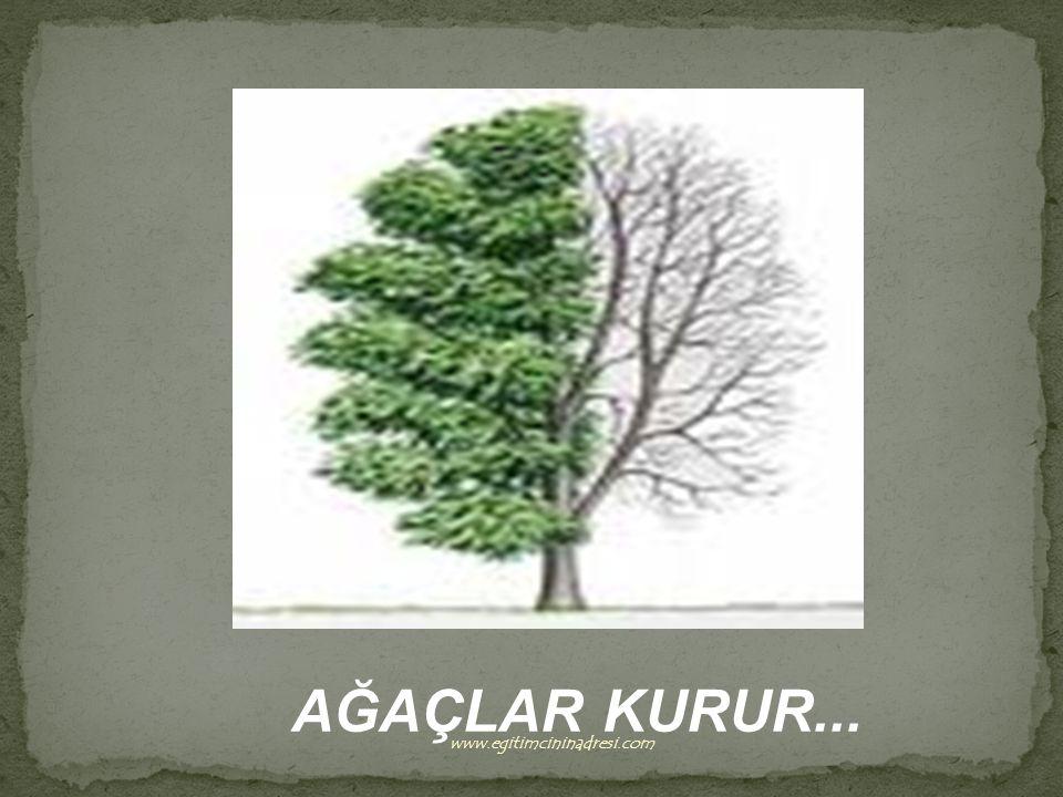 AĞAÇLAR KURUR... www.egitimcininadresi.com