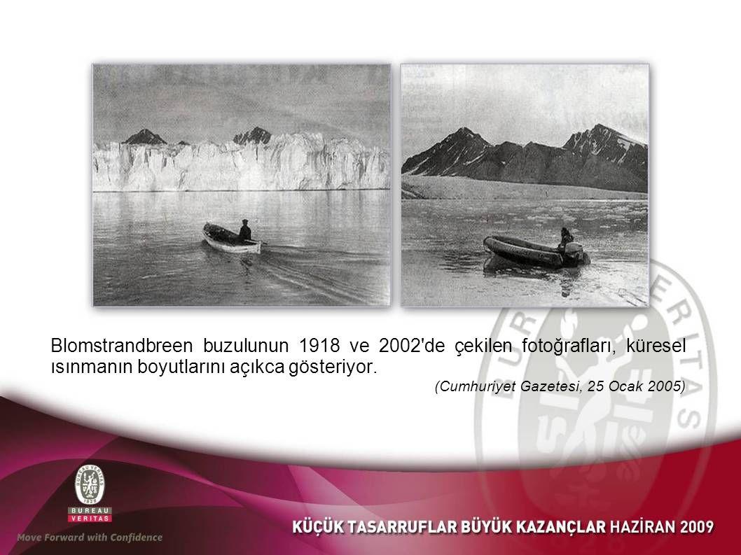 Blomstrandbreen buzulunun 1918 ve 2002 de çekilen fotoğrafları, küresel ısınmanın boyutlarını açıkca gösteriyor.