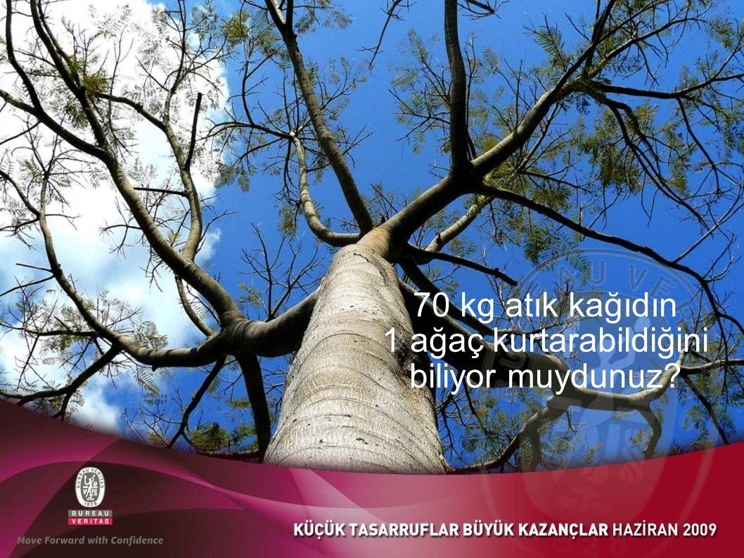 70 kg atık kağıdın 1 ağaç kurtarabildiğini biliyor muydunuz
