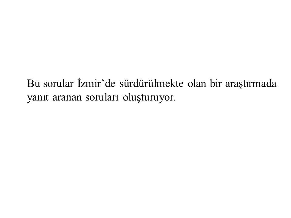 Bu sorular İzmir'de sürdürülmekte olan bir araştırmada