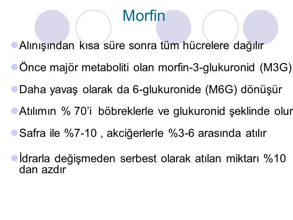 Morfin Alınışından kısa süre sonra tüm hücrelere dağılır