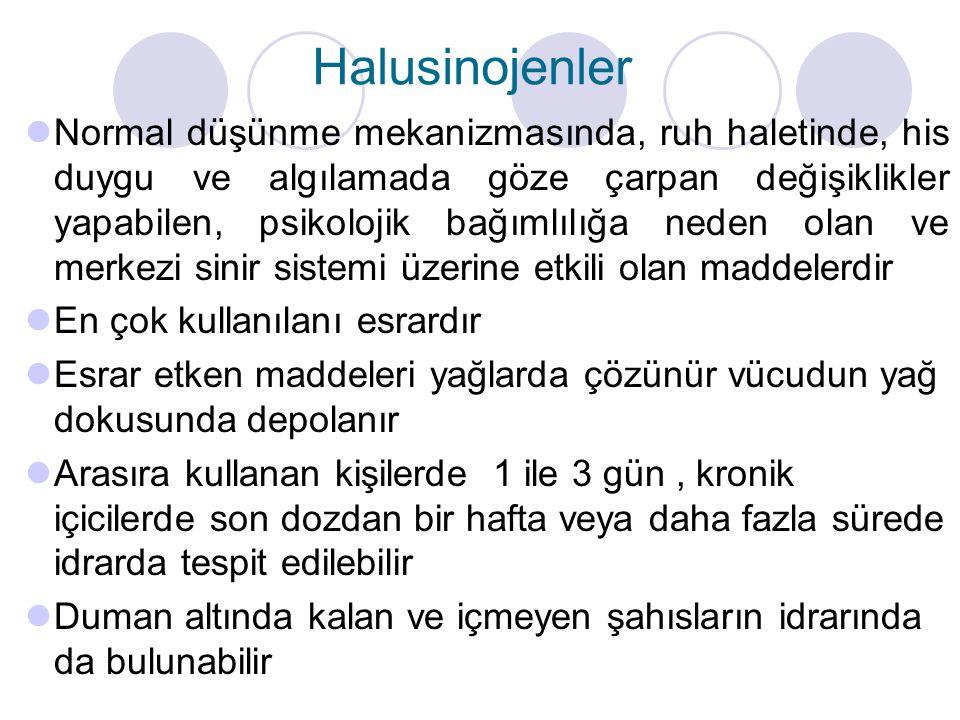 Halusinojenler