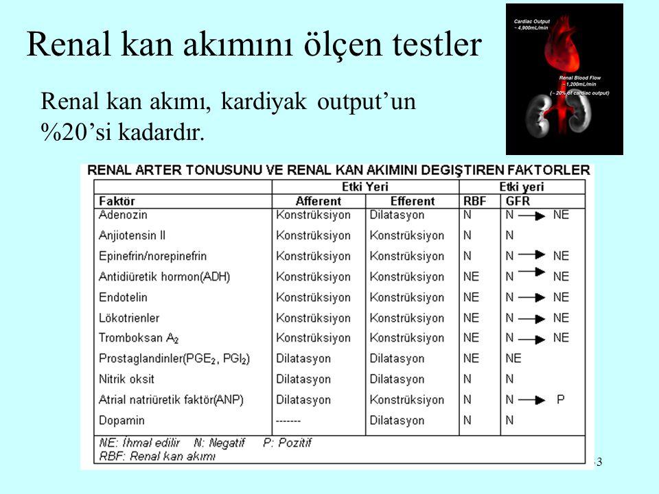 Renal kan akımını ölçen testler
