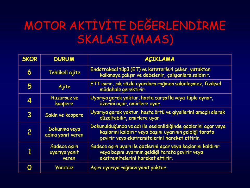 MOTOR AKTİVİTE DEĞERLENDİRME SKALASI (MAAS)