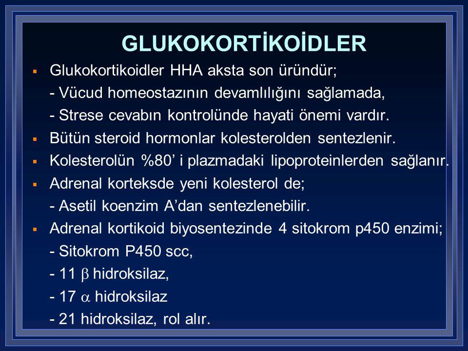 GLUKOKORTİKOİDLER Glukokortikoidler HHA aksta son üründür;