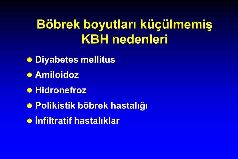 Böbrek boyutları küçülmemiş KBH nedenleri