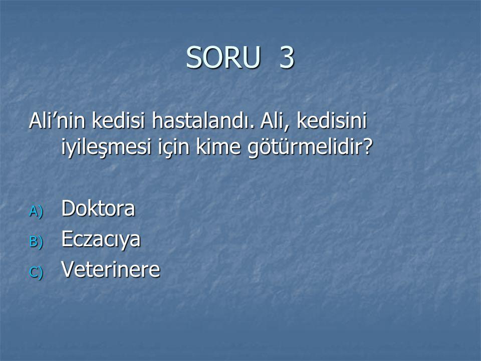 SORU 3 Ali'nin kedisi hastalandı. Ali, kedisini iyileşmesi için kime götürmelidir Doktora. Eczacıya.