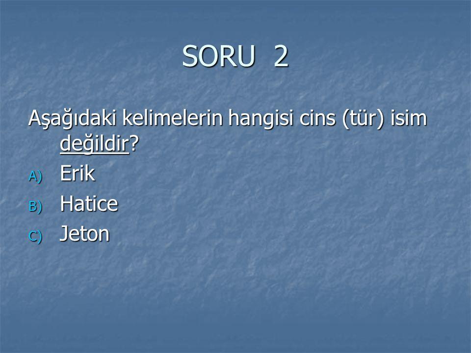 SORU 2 Aşağıdaki kelimelerin hangisi cins (tür) isim değildir Erik