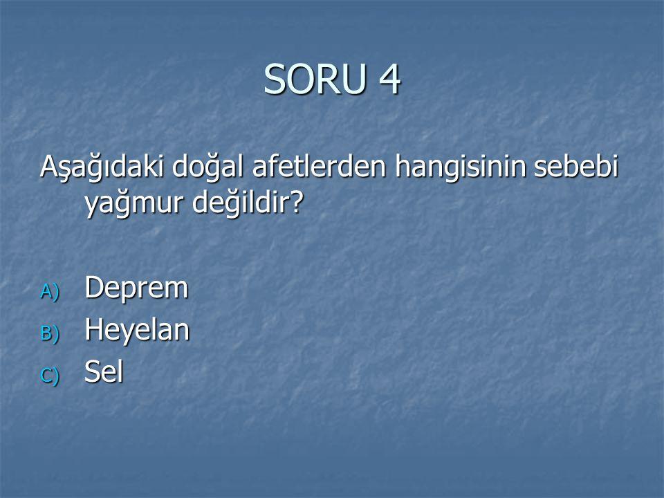 SORU 4 Aşağıdaki doğal afetlerden hangisinin sebebi yağmur değildir
