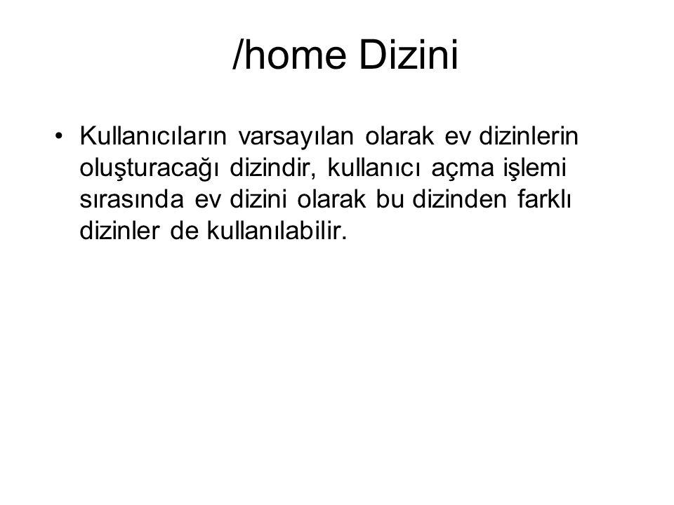 /home Dizini