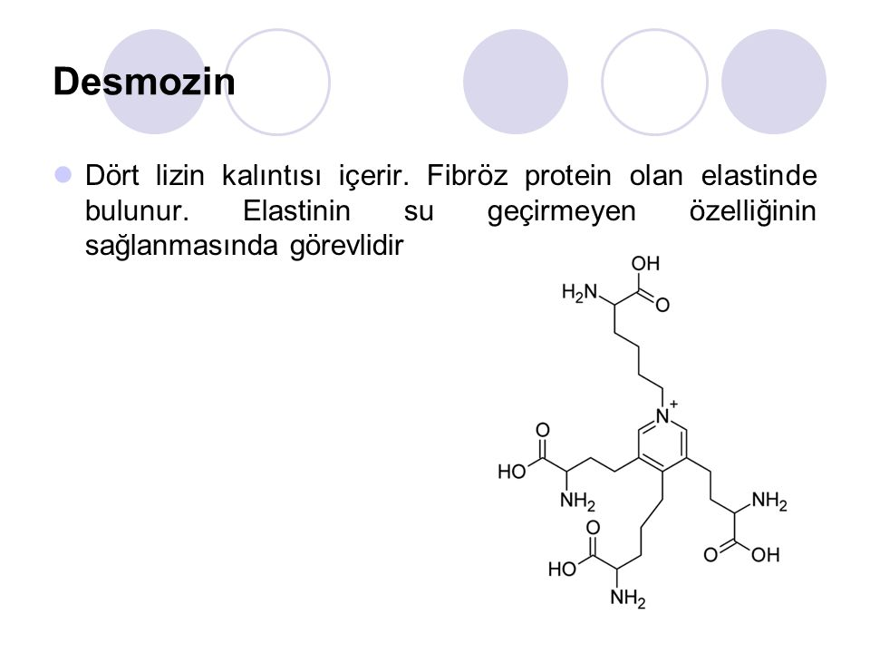 Desmozin Dört lizin kalıntısı içerir. Fibröz protein olan elastinde bulunur.