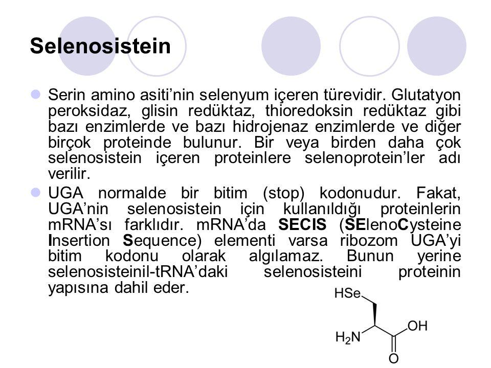 Selenosistein