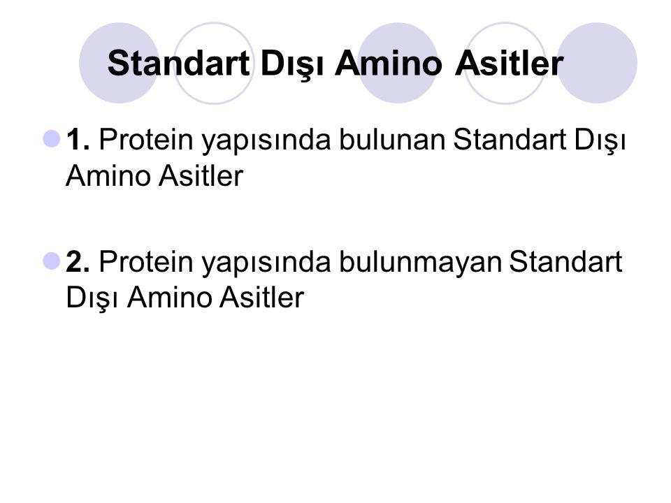 Standart Dışı Amino Asitler