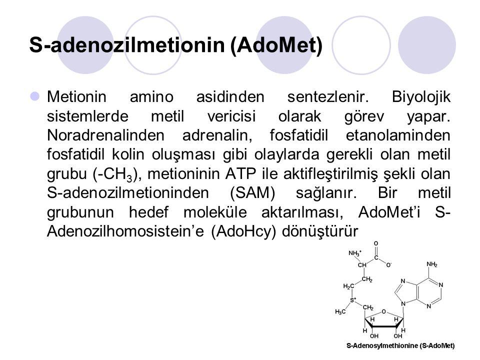 S-adenozilmetionin (AdoMet)