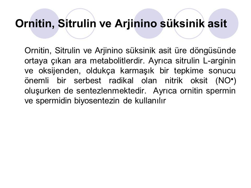 Ornitin, Sitrulin ve Arjinino süksinik asit